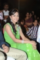 Vithika Sheru Latest Images @ Prema Ishq Kadhal Audio Release