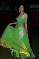 Vithika Sheru Latest Images @ Prema Ishq Kaadhal Audio Release