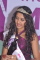 Vivel India Miss South 2011 Press Meet Pictures