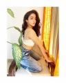Actress Wamiqa Gabbi Latest Photoshoot Stills