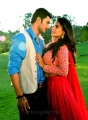Prince, Jyoti Sethi in Where is Vidyabalan Movie Hot Stills