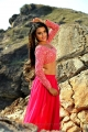 Actress Jyoti Sethi in Where is Vidya Balan Movie Hot Stills
