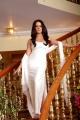 Actress Celina Jaitley in XYZ Telugu Movie Hot Stills