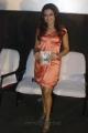 Actress Dimple Chopra at Yaaruda Mahesh Movie Audio Launch Stills