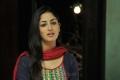 Gouravam Movie Actress Yami Gautam Latest Photos