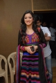Actress Richa Panai at Yamudiki Mogudu Movie Success Meet Stills