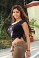 Actress Komal Jha in Yeduruleni Alexander Movie Stills