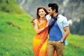 Shruti Hassan, Ram Charan Teja in Yevadu Movie Pics