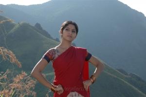 Actress Swasika in Yevanum Buthanillai Movie Photos