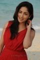 Actress Yami Gautam in Yuddam Movie Photos
