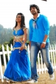Radhika Pandit, Prajwal Devaraj in Yuvakudu Movie Hot Stills