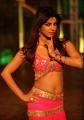 Actress Priyanka Chopra Hot in Zanjeer Movie Photos