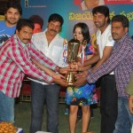Aha Naa Pellanta Movie Success Meet