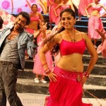 Surya Anushka Singam Movie Stills
