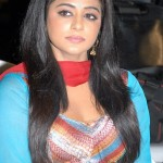 Actress Priyamani @ Nuvekkadunte Nenakkadunta Audio Release Photo Gallery
