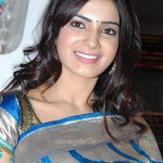 Samantha @ Skin Touch Textile Showroom Launch Stills, Samantha Cute Saree photos