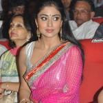 Shriya Saran @ T Subbarami Reddy Awards Stills