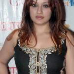 Sonia Agarwal @ Blind Date Premiere Show Stills