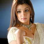 Aarthi Agarwal Hot Pics in Saree