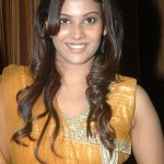 Chandni Tamilarasan Stills