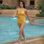 Aha Naa Pellanta Anita Hot Pics, Anita Hassanandani Hot Stills