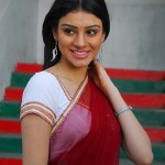 Anchal Sabharwal Latest Stills, Anchal Sabharwal New Pictures