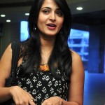 Anushka Cute Photos @ Nagavalli Double Platinum Disk Function