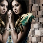 Anushka Shetty Latest Hot Photo Shoot Stills