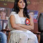 Cute Anushka Shetty @ TSR Awards 2011