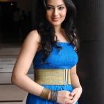 Komaram Puli Heroine Nikesha Patel Stills