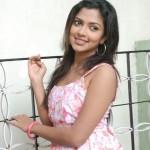 Mynaa Movie Actress Amala Paul Latest Pictures, Photo Gallery