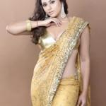 Namitha Hot Saree Photo Shoot Pics, Namitha Photo Shoot Wallpapers