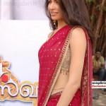 Parvathy Omanakuttan in Saree @ Uma Maheshwaram Movie Launch Stills