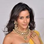 Priya Anand Hot Photo Shoot HQ Stills