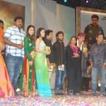 Shakti Telugu Movie Audio Release Function Photo Gallery