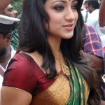 Trisha in Silk Saree Stills