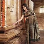 Pothys Trisha Saree Ad Photos