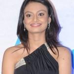 Actress Nikitha Narayan Hot Stills