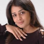 Nikitha Thukral Photo Shoot Stills