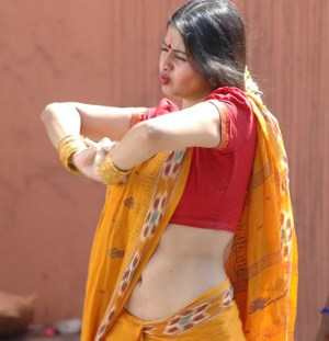 saree in Actress hot sangeetha