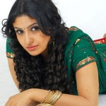 Monica in Green Saree Photo Shoot Stills