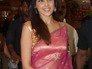 Genelia Hot in Transparent Saree Pics