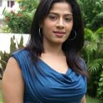 Tamil Actress Meenal Hot Stills