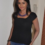Ramya Nambeesan @ Kullanari Koottam Press Meet Stills