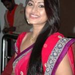 Sneha Cute in Saree Photos
