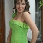 Telugu Actress Ruby Hot Stills