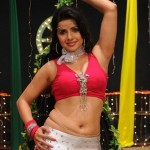 Madhu Sharma Hot Item Song Pics in Kodi Punju Movie