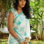Rima Kallingal Hot Pictures