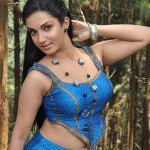 Actress Soundarya Hot Stills in Mallukattu