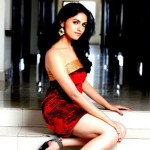 Sunaina Photo Shoot Stills